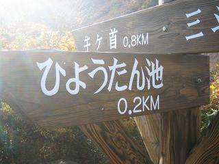 nasu-kouyou236