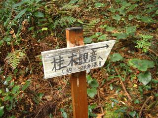 ogose-ootakatoriyama212
