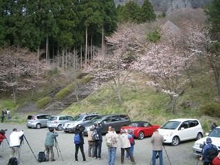 sakuranosato205