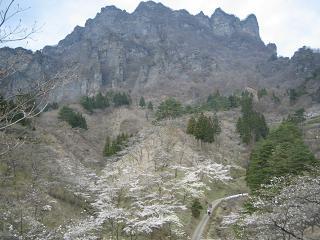 sakuranosato211