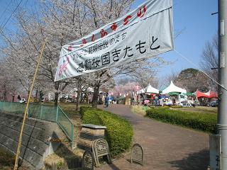 takaosakura202