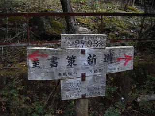tanzawa223