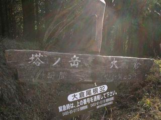 tanzawa230
