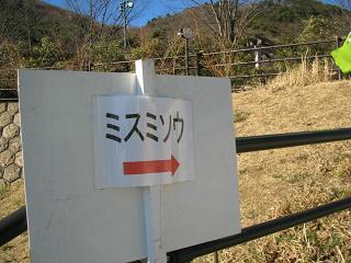 yukiwari201