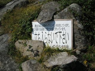 yunomaru247