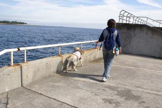 歩きing 八景島