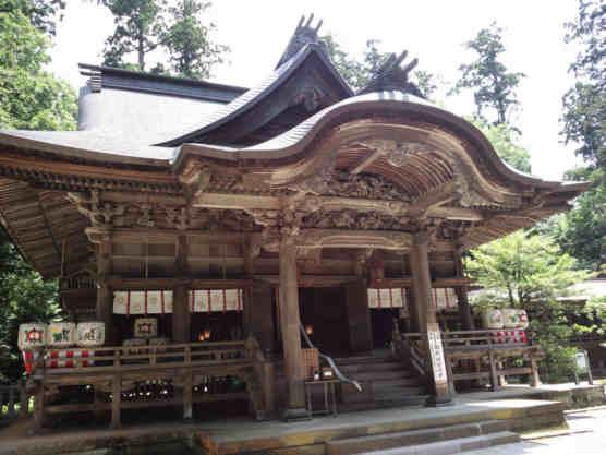 加茂山公園110703青海