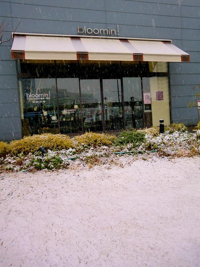 雪景色05