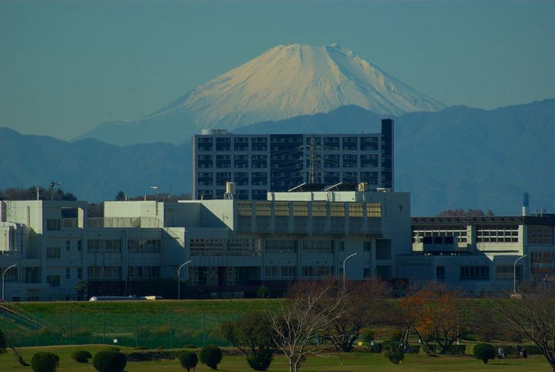 多摩川冬景色富士山01