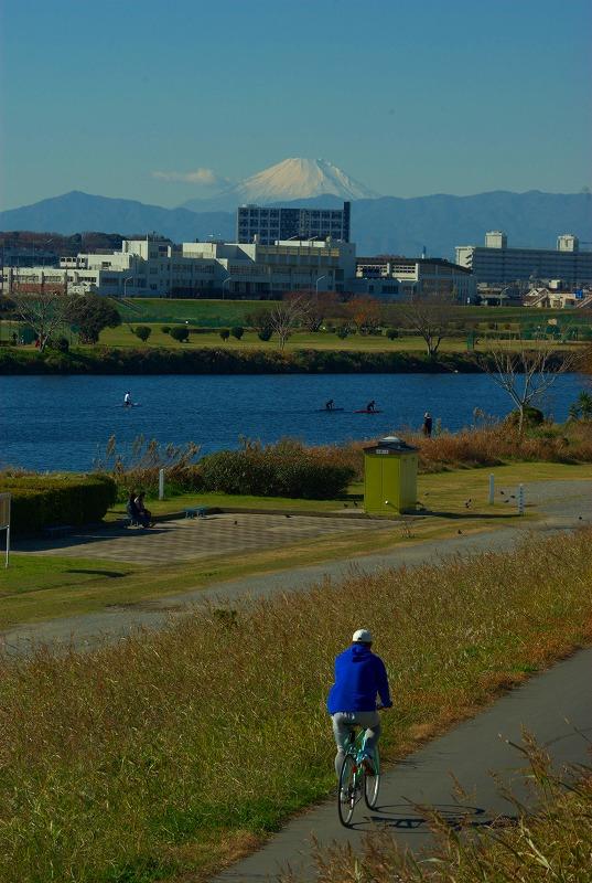 多摩川冬景色富士山02