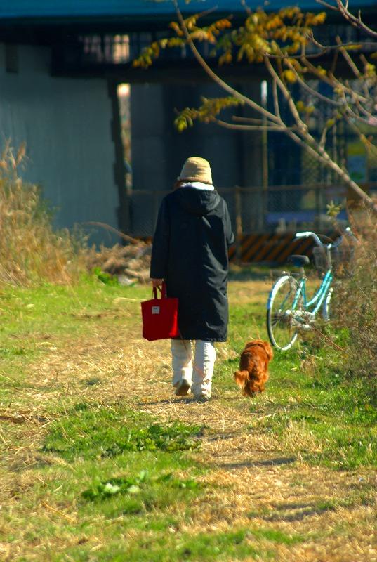 多摩川冬景色散策01