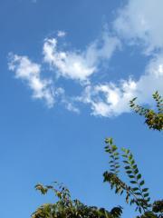 夏の空!?