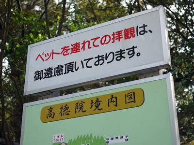 06横浜鎌倉2日目