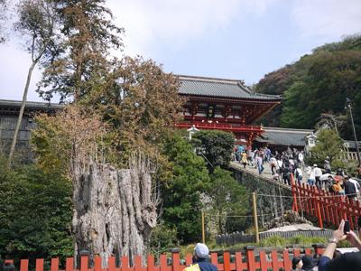 17横浜鎌倉2日目