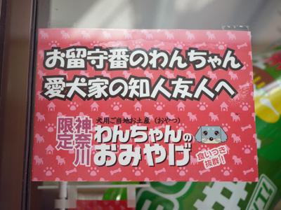 14横浜鎌倉2日目
