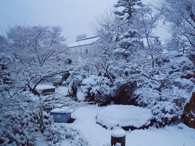 雪が積もったH191221