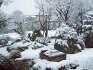 雪H200129