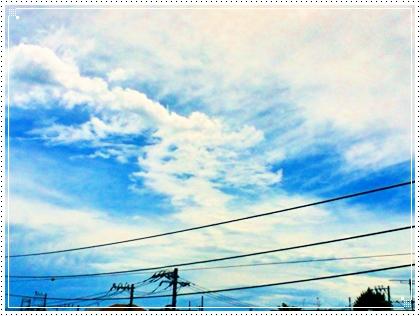 IMG_1325.jpg