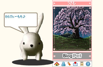 0401usamo_warabi.jpg