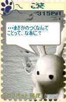 070116pic11.jpg