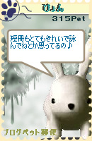 070116pic15.jpg