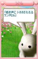 071013pic11.jpg