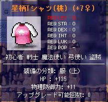お魚ソロ用の体力装備(服上)