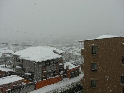 写真キャプション=自宅の奈良(生駒市)で何年ぶりかの大雪になった