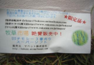 りんちゃん.1753jpeg