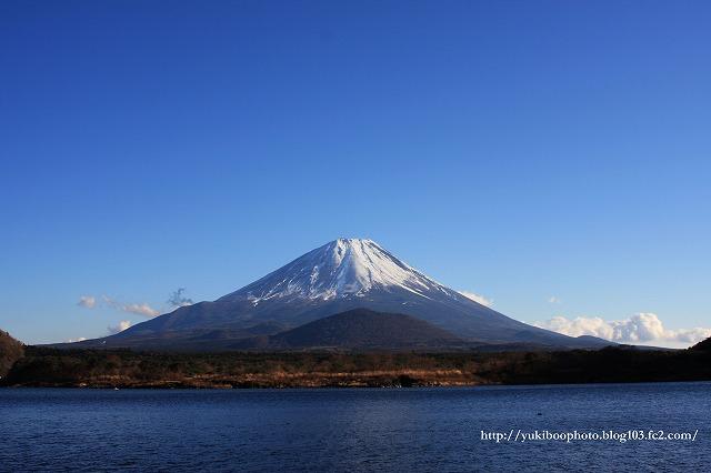 富士山(精進湖)2