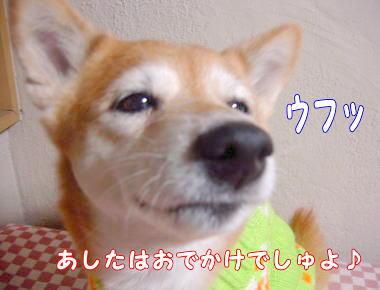 画像3 1201