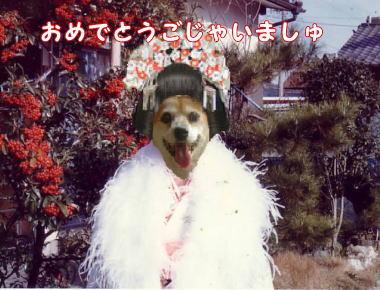 kimono01(3)1.jpg
