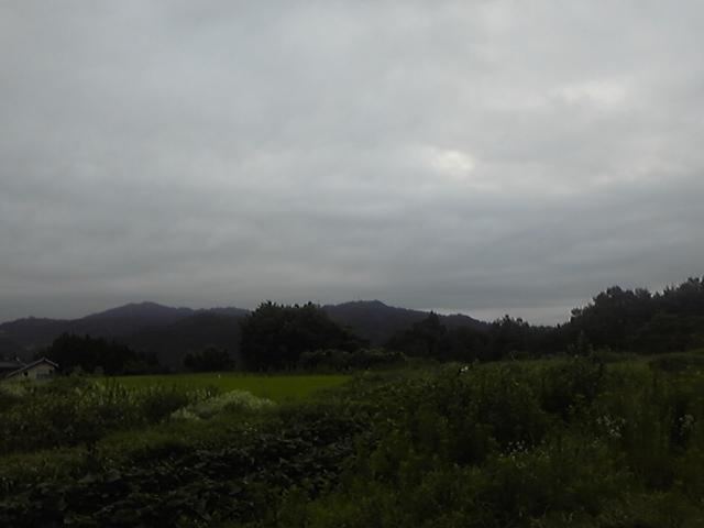 翌朝は曇り空