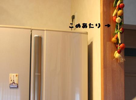 New 冷蔵庫くん。