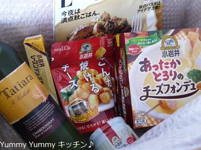 小岩井乳製品新商品モニター