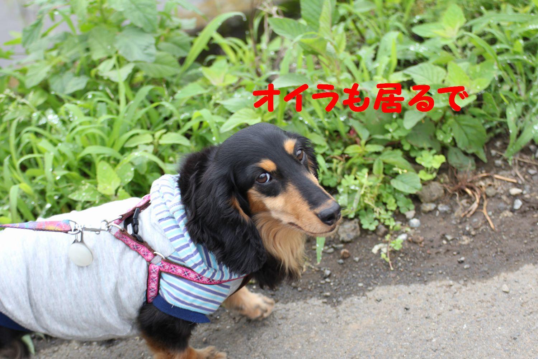 yuta20110618-4.jpg