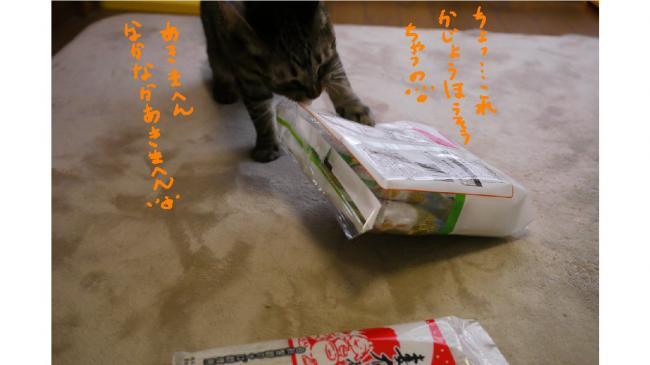 0017_convert_20110820020124.jpg