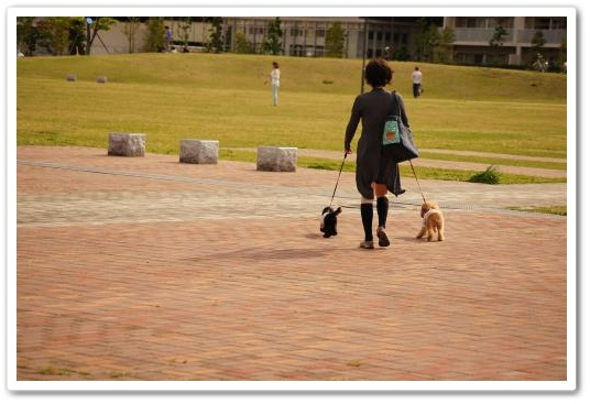 20110430yuzukosyo2k.jpg