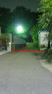 P8210003.jpg