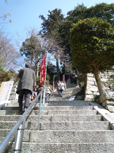 琵琶湖2012・4・7~8 (18)