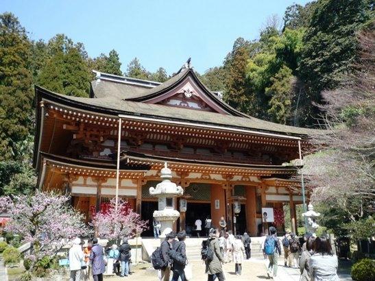琵琶湖2012・4・7~8 (19)