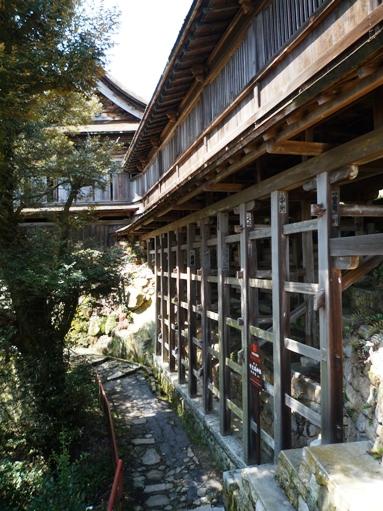 琵琶湖2012・4・7~8 (28)