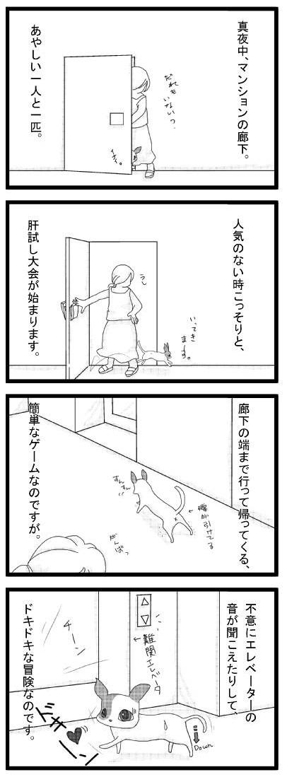 20110813_01.jpg