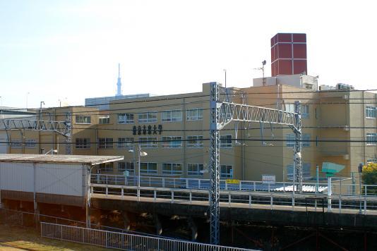 miraidaigaku2011a.jpg