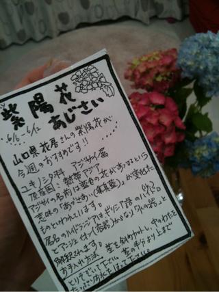 iphone_20110608081912.jpg
