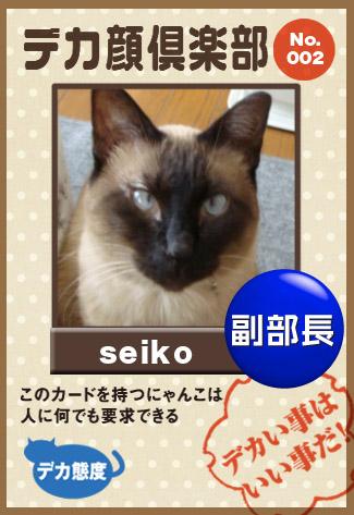 seiko_20110929212658.jpg