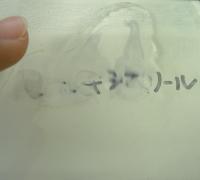 フェノキシエタノール7