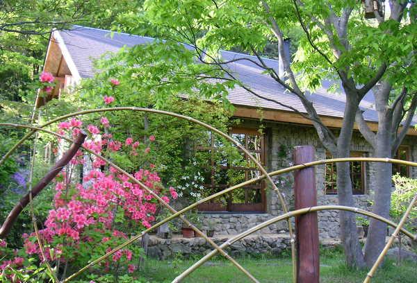 竹フェンスとヤマツツジ