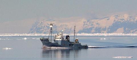 オーストラリア連邦裁判所が日本の調査捕鯨船に操業停止命令☆これは ...