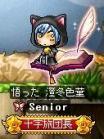 澄冬色菫・花風灯火(serosia)